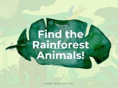 12 Rainforest Animals